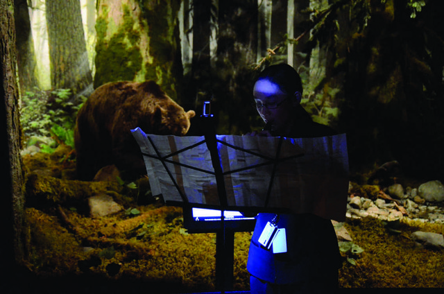 """Julia Zhu performs """"The Elk Concerto"""" as part of Music for Natural History, 2012, a performative sound installation at the Royal BC Museum in Victoria"""