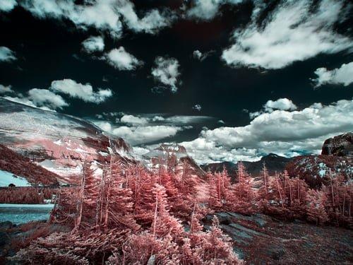 """Natasha Ivanco """"Glacier Park, Montana, USA"""""""
