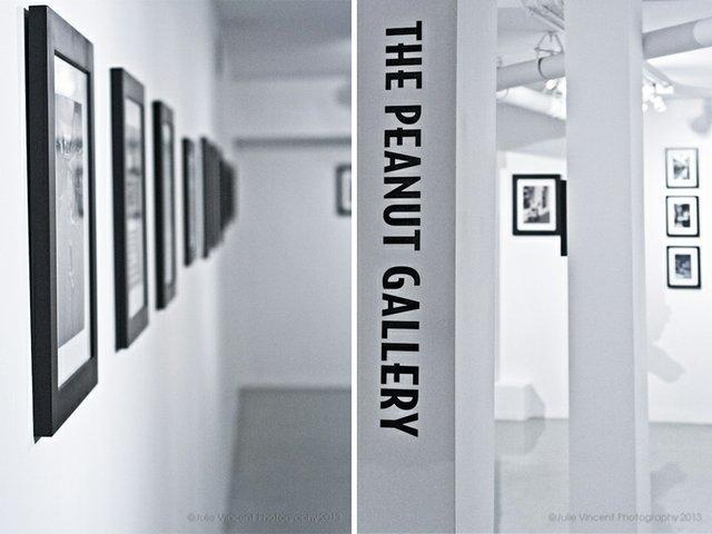 Peanut Gallery logo