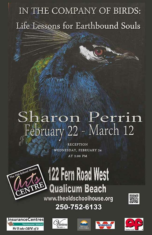 Sharon Perrin 2016