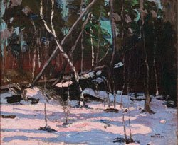 """Early Snow, Algonguin Park"""