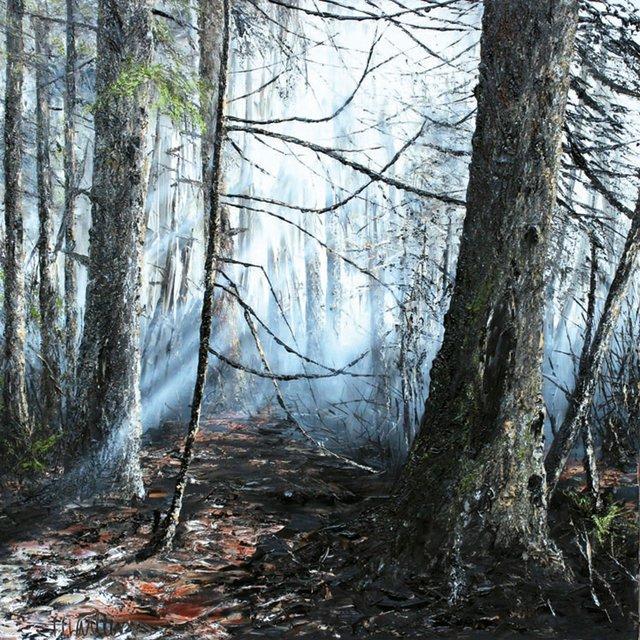 "Marleen Vermeulen, ""Mystical Forest,"" 2015"