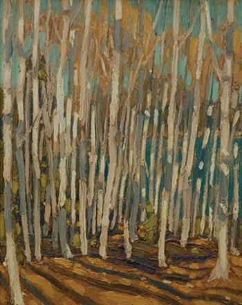 """Birch Grove Algonquin Park"""