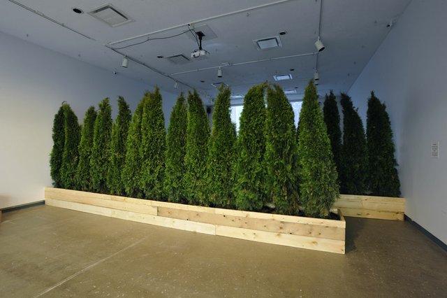 "Abbas Akhavan, ""Untitled Garden,"" 2009/2016"