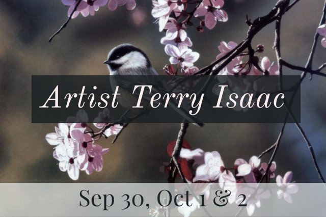 Terry Issac at Picture This!