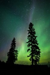 """Robert and Melodie """"Northern Lights"""""""