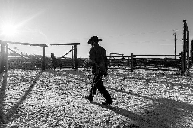 "Luis Fabini, ""Douglas Lake Ranch, British Columbia, Steve Brewer,"" nd"