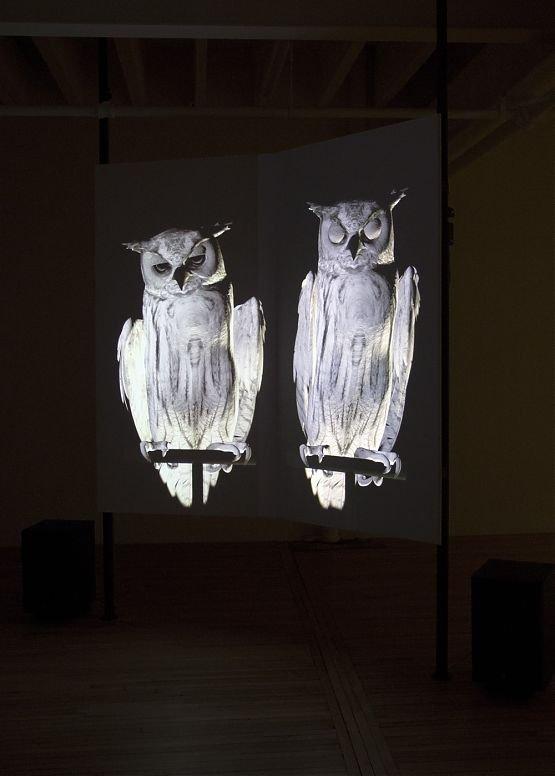 """Ann Lislegaard & Neil Wedman, """"Uncertain Reflections"""""""