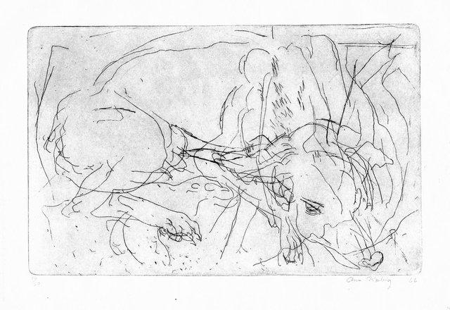 "Ann Kipling, ""Untitled (sleeping dog),"" 1966"
