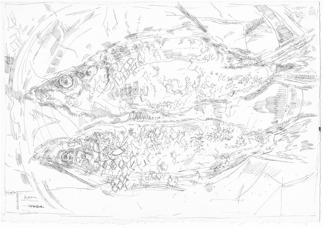 "Ann Kipling, ""Untitled (two fish on plate),"" ca. 1964"