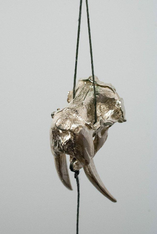 "Couzyn van Heuvelen, ""Walrus Lure,"" 2015,"