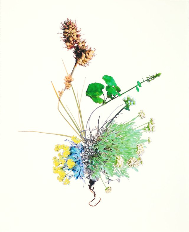 "Jennifer Wanner, ""Periculum – Yukon,"" 2014"