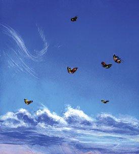 """Monarca Swirl"""
