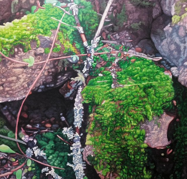 "Ward Schell, ""Moss and Lichen,"" 2017"