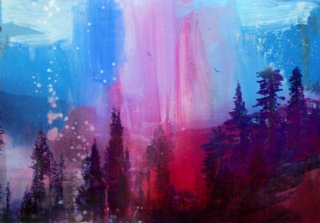 "Steven Nederveen, ""Forest in Pink,"" nd"