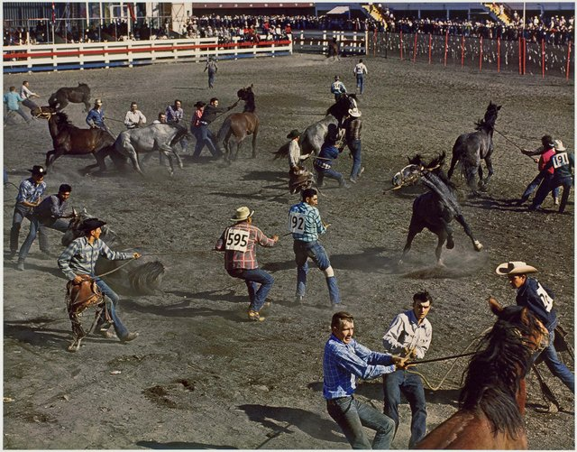 "George Hunter, ""Wild Horse Race, Calgary Stampede,"" 1958"